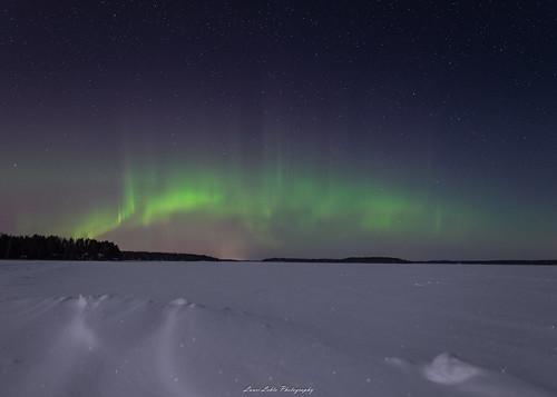 suomi finland jyväskylä ruokosaari nikon d610 sigma 20mm art auroras auroraborealis northernlights nature landscape sky stars winter lake