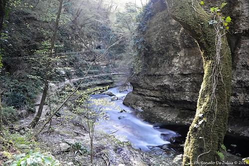 valle dell'Orfento DSC_2207 (Large)_risultato
