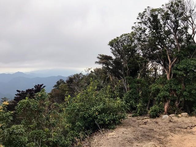 仙ヶ岳 山頂 御所谷方面