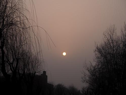 清華大学 P3130752