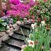 #gardenofthegods #gardenofeden #flowers #botanical #gardens #chicago #lincolnparkzoo