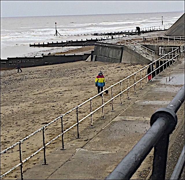 Hornsea Dog walkers