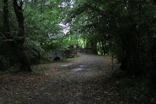20120924 26 023 Jakobus Wald Weg Brücke