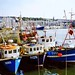 The Barbican fish quay, Plymouth, 30th June 1993