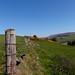 West Kilbride Landmarks (15)
