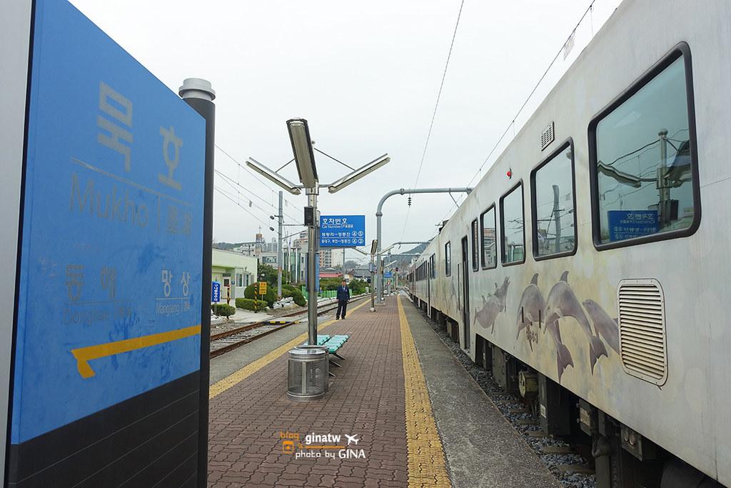 江原道景點/賞櫻》二訪正東津搭海洋列車(바다열차)+江陵浪漫櫻花之旅+正東津鐵道自行車(Rail Bike) @Gina Lin