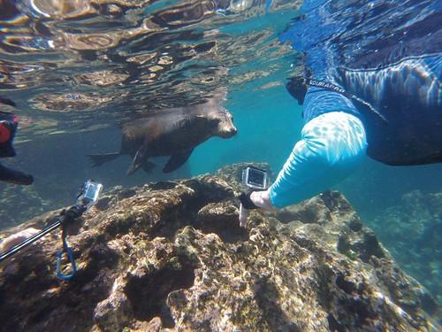 Blow your mind Galápagos voyage