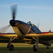 Shuttleworth June Evening Show by Harry Measures
