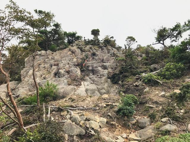 仙ヶ岳 南尾根 P1 岩場