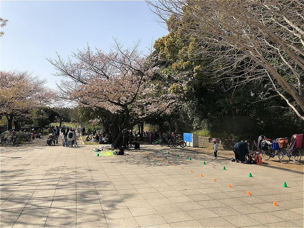20180331_光ヶ丘 (10)