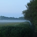 Mist on the rhyne