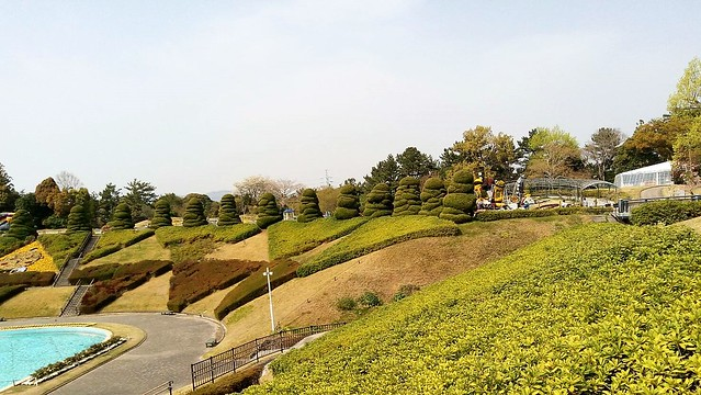濱松花卉主題公園 (15)