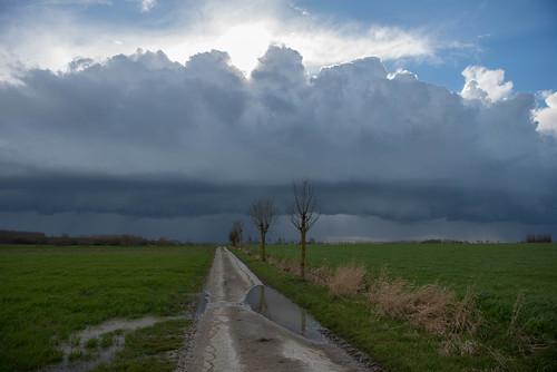 Between Vleteren and Veurne_DVL1191