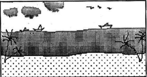 समुद्री तट