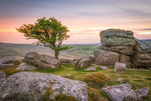 dartmoor devon tor rocks rock tree trees landscape landscapes landscapephotography landmark landmarks countryside westcountry sunset cloud sky pink grey clouds england greatbritain canon eos80d eos efs1585mmisusm