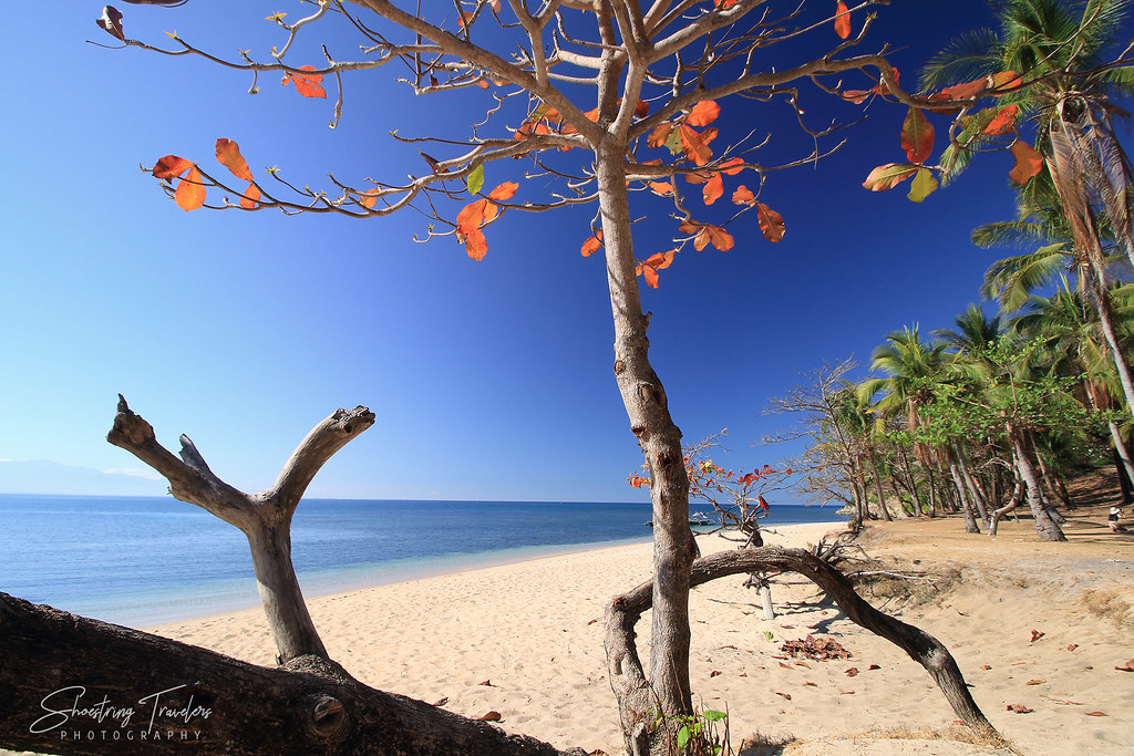 beach at Hermana Menor Island