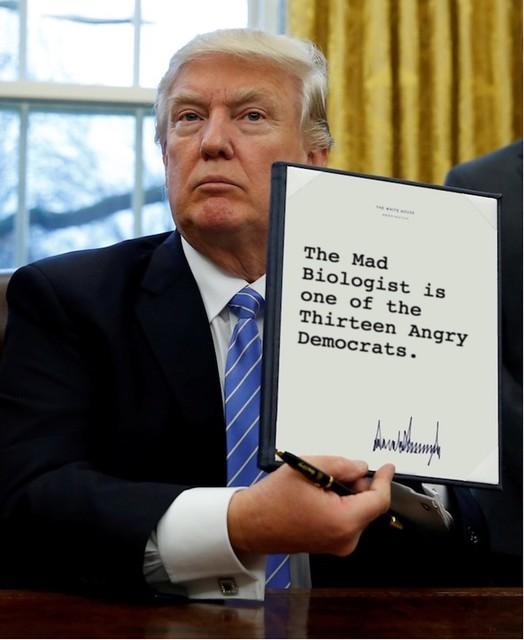Trump_13angrydemocrats