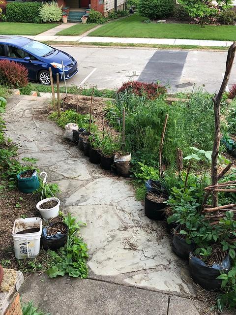 The mobile potato garden