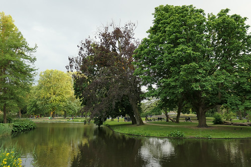 Peaceful afternoon in Vondelpark, Amsterdam - Explore!