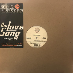 BUSH BABEES:THE LOVE SONG(JACKET A)