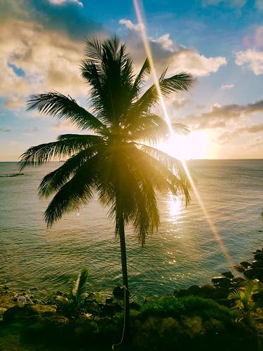 grosisletquarter stlucia windwardislands caribbean chocbay caribbeansea atlanticocean lesserantilles westindies saintlucia choc castries lc corinth sunset palmtree