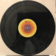 FLOATERS:FLOATERS(RECORD SIDE-A)