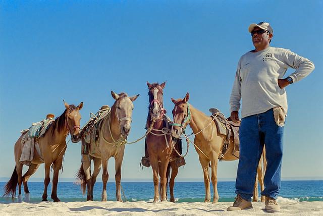 Pablo's Horses