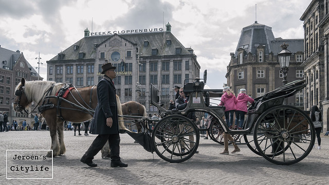 Horse Carriages will be banned in future Amsterdam