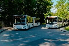 В Петербурге на первый матч ЧМ-2018 фанатов повезут 130 автобусов