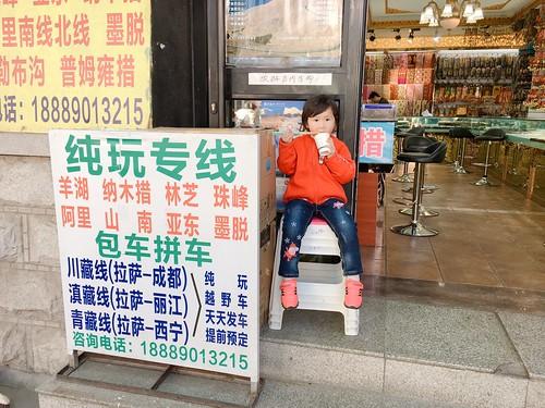 西藏的萌娃