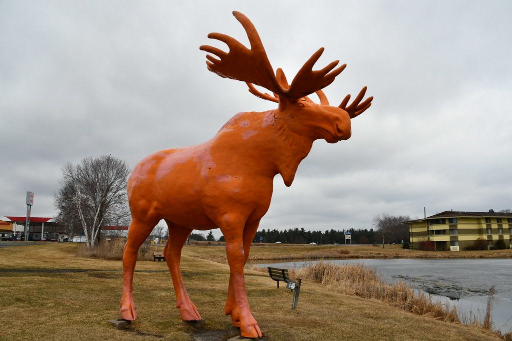 Orange Moose, Black River Falls, WI