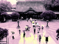 Dazaifu Tenmangu Shrine in the Rain