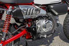 Honda Monkey 125 2018 - 19