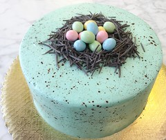 Robin's Egg Blue Chocolate Nest Cake with Speckled Icing