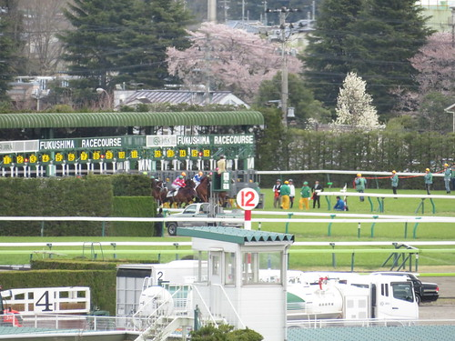 福島競馬場のダート1150mのスタート