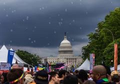 Capitol Bubbles at Capital Pride