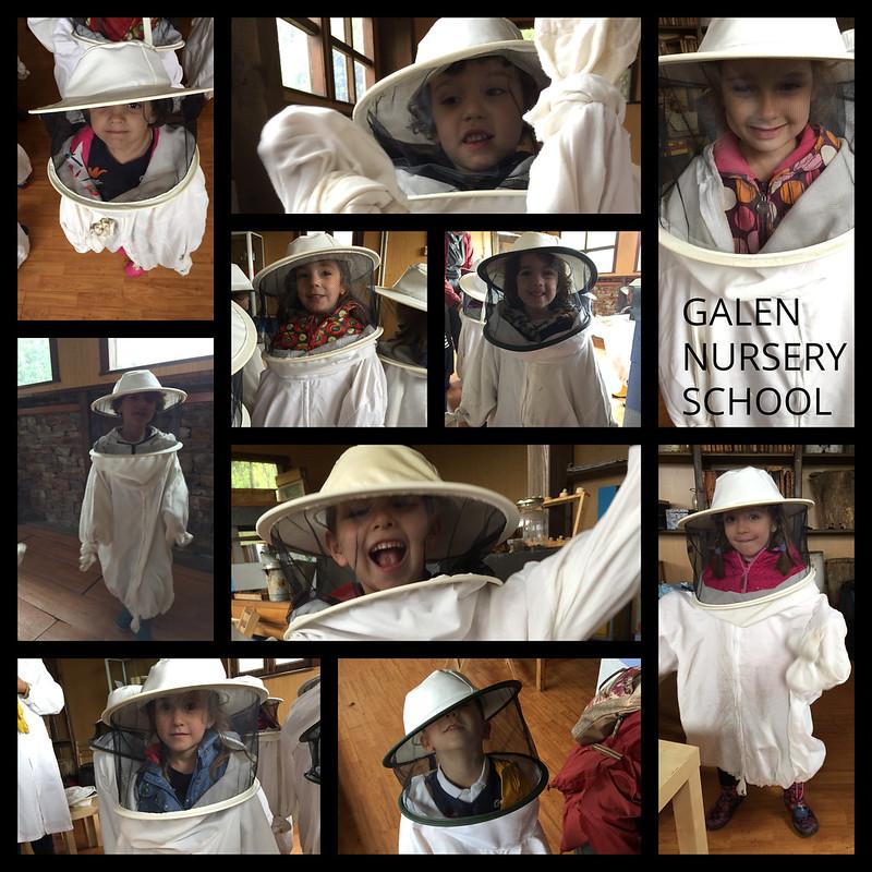 abellas 2