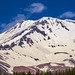Mt Shasta from the Bunny Flat Trailhead