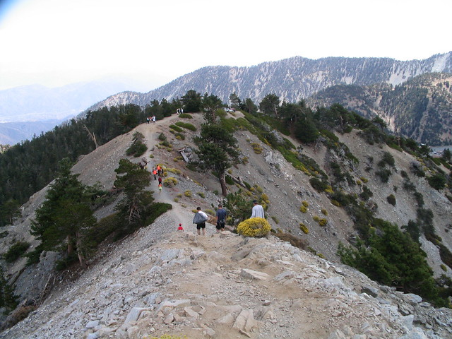 Mount San Antonio 022