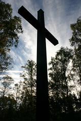 Belsen cross 2