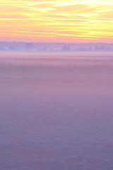Aube sur la baie / Dawn on the bay