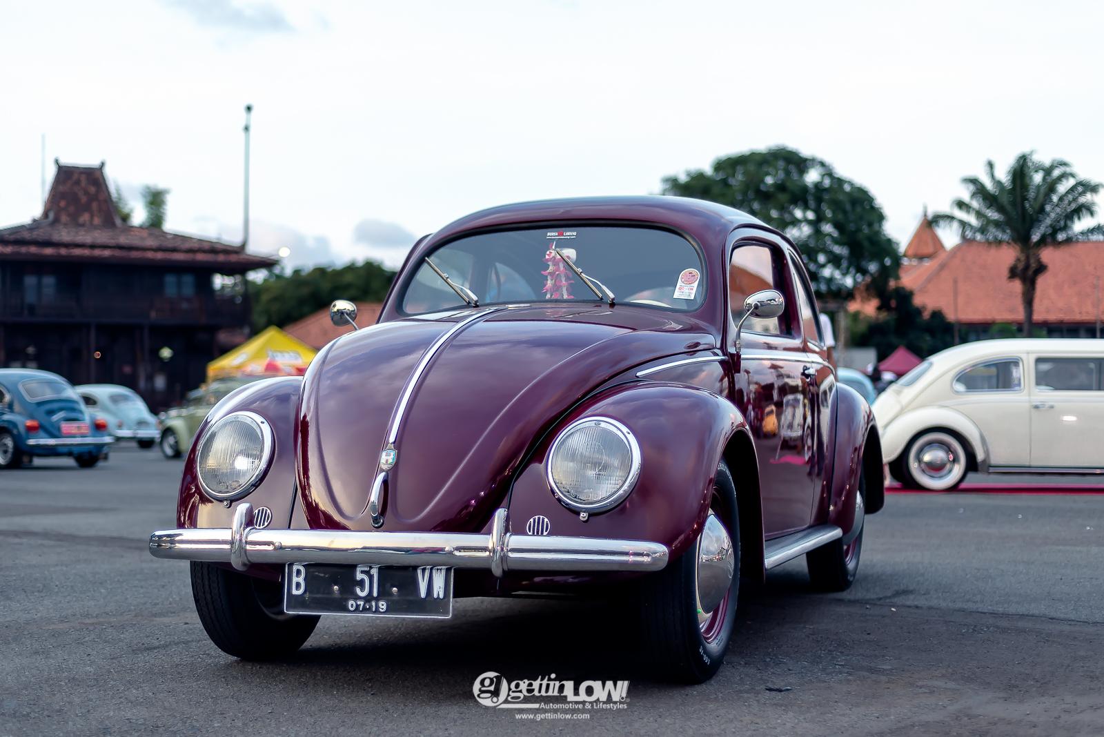 goesdi_beetle-split_-3