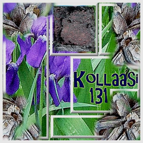 kollaasi131