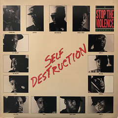 THE STOP THE VIOLENCE MOVEMENT:SELF DESTRUCTION(JACKET A)