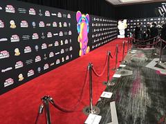 at the 2018 Radio Disney Music Awards Red Carpet in Hollywood - IMG_7730