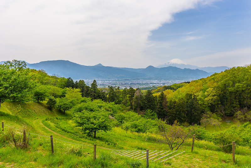 View from the top of the hill at Ooi Kanagawa 2018