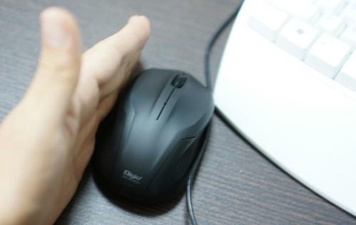 左右非対称マウス