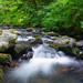 McDowell Creek, Oregon - cascade by Wayne~Chadwick