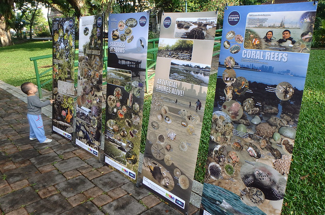 Singapore marine biodiversity brochures and information panels