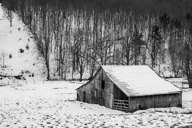 black and white barn2